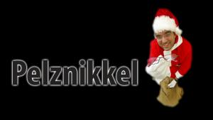 2014-uehlin nikolaus2
